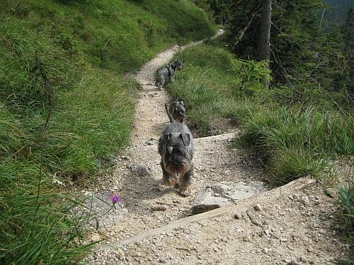 toter mann berchtesgaden